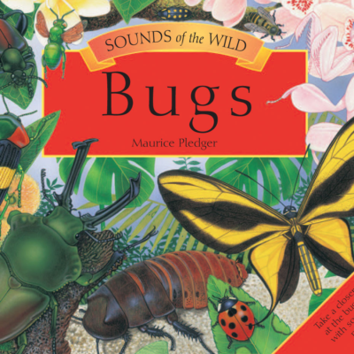 Sounds of the Wild: Bugs
